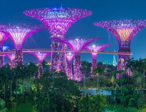 Conseil placement pour expatriés à Singapour